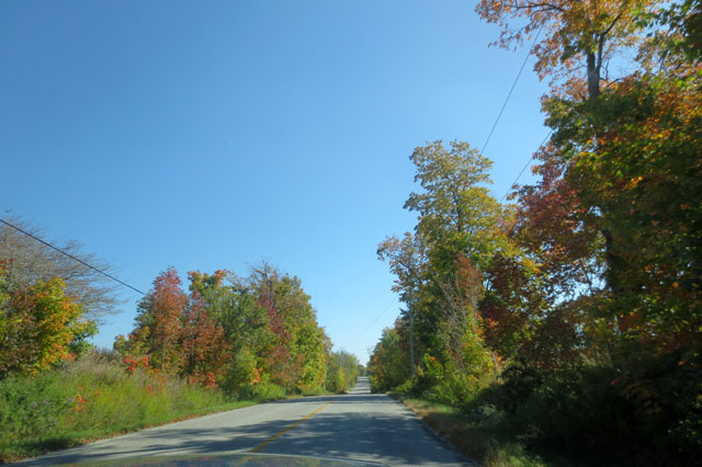 autumn-drive-country-road