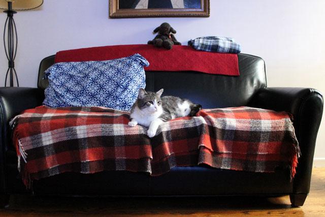 ed-on-sofa-3