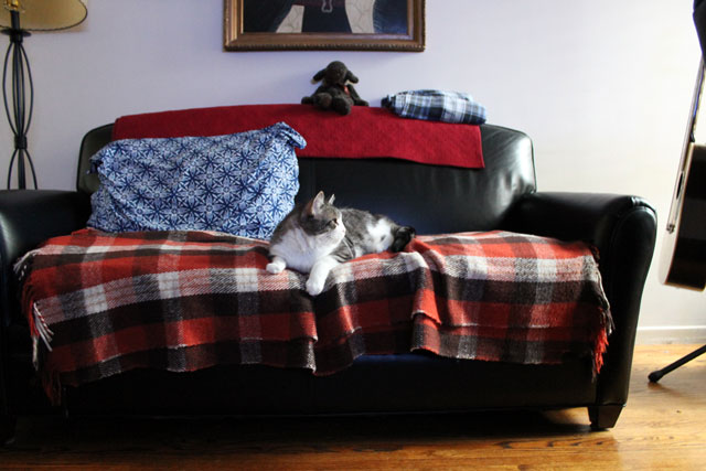 ed-on-sofa