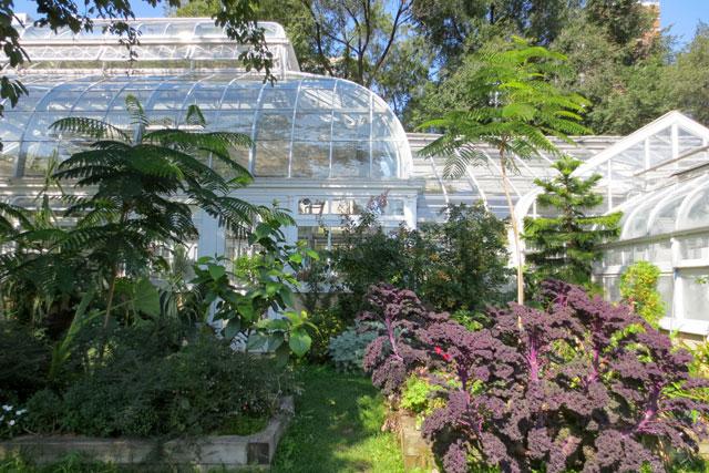 greenhouses-allan-gardens