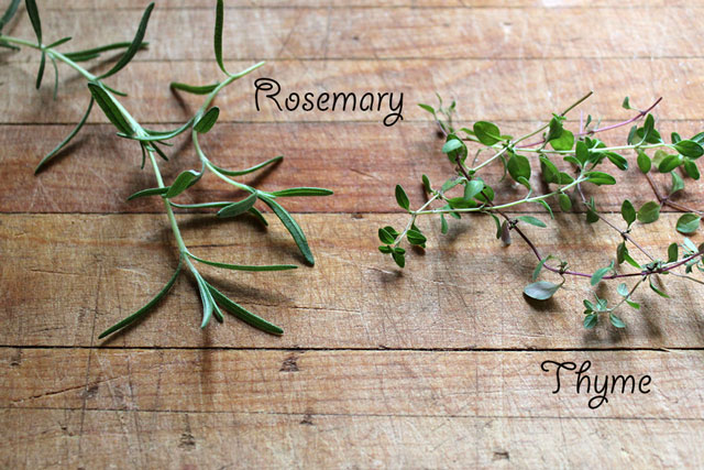 rosemary-and-thyme