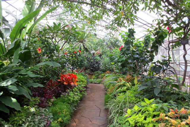 A Visit to the Enchanting Allan Gardens Toronto | Loulou ...