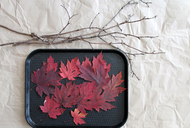 making-pressed-leaves-on-branches