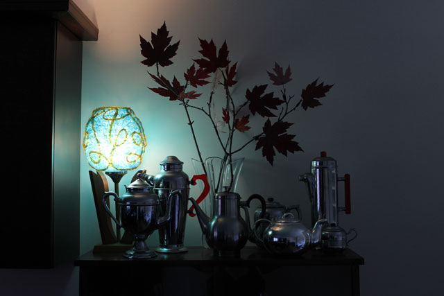 mood-lighting-branches-pressed-leaves