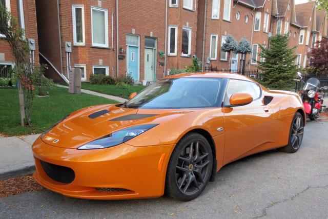 orange-lotus-2