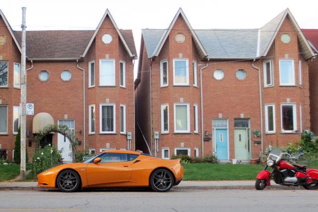 orange-lotus