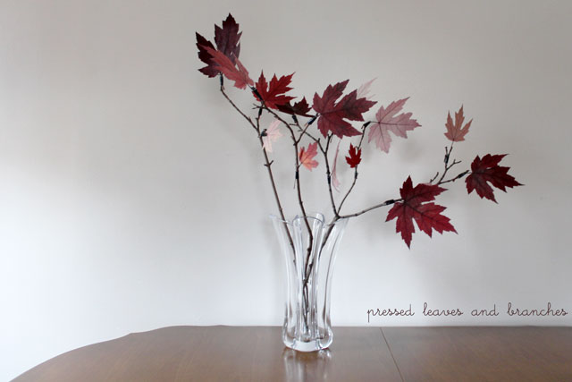 pressed-leaves-and-branches-diy