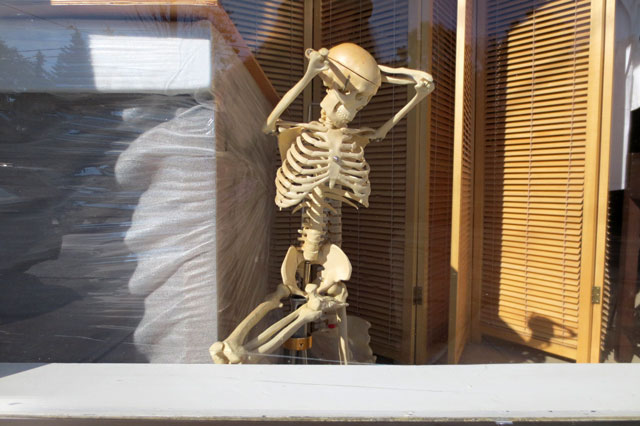 real-skeleton-in-a-window