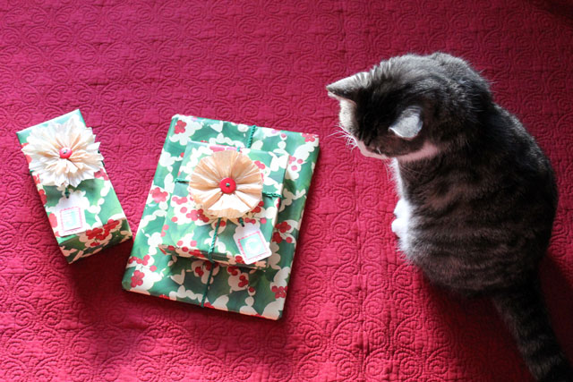cat-with-christmas-gifts