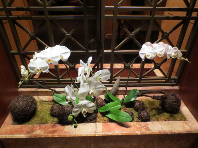 orchids-hotel-intercontinental-toronto