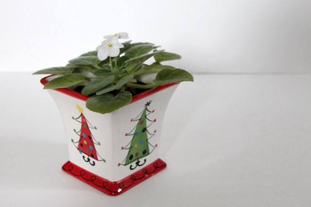 thrifted-christmas-plant-pot