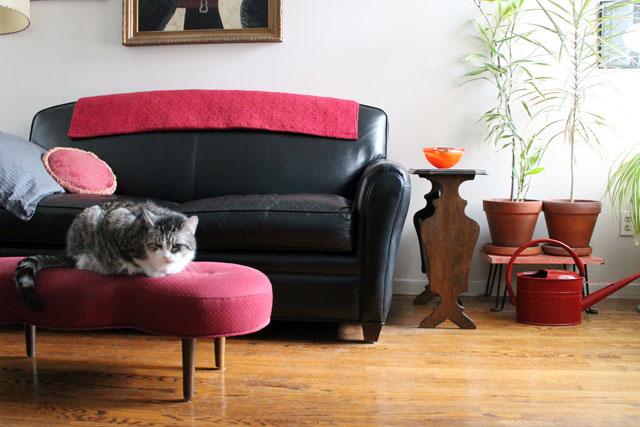 ed-in-living-room