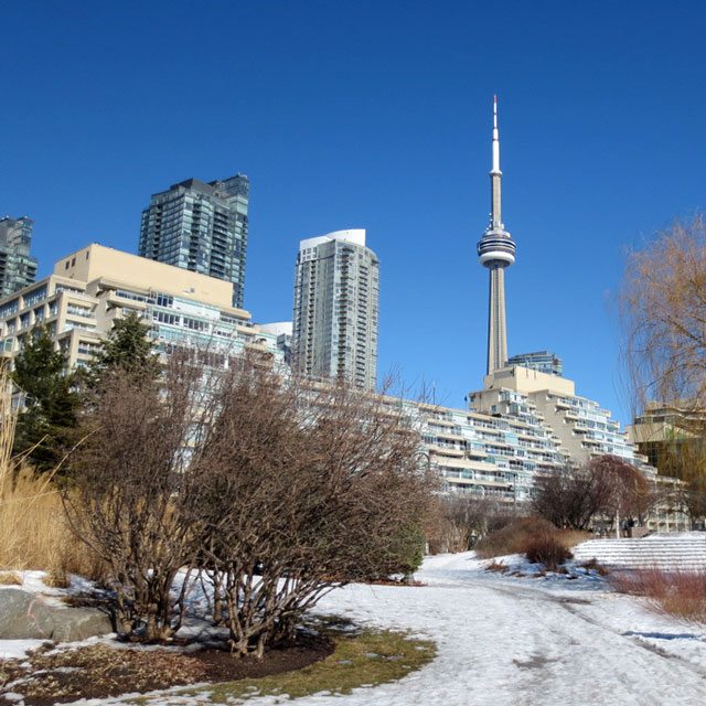cn-tower-from-waterfront