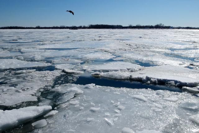 icy-toronto-waterfront