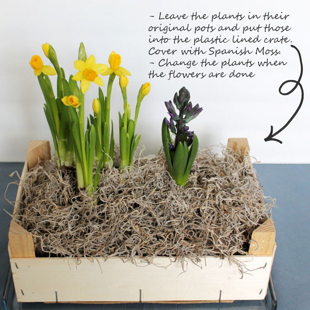 how-to-make-an-indoor-plant-box