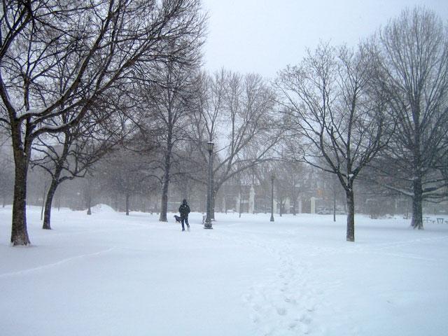 snowstorm-toronto-march-2014-02