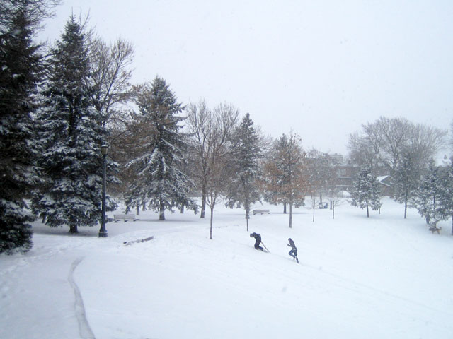 snowstorm-toronto-march-2014-05