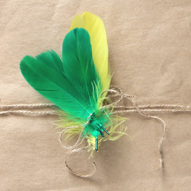 diy-gift-decoration-coloured-feathers gift wrapping