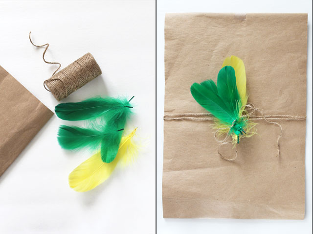 diy gift decoration with feathers