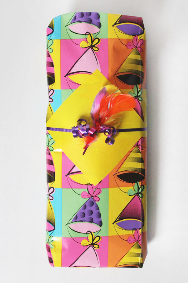 gift-wrapping-diy-feather-gift-decoration