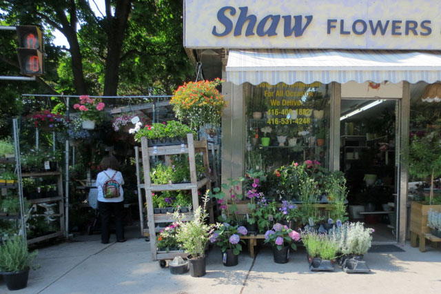 shaw-flowers-and-gifts-shop