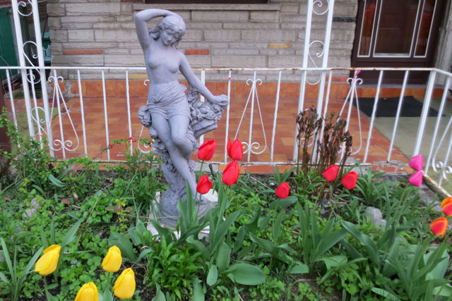 statue-and-tulips