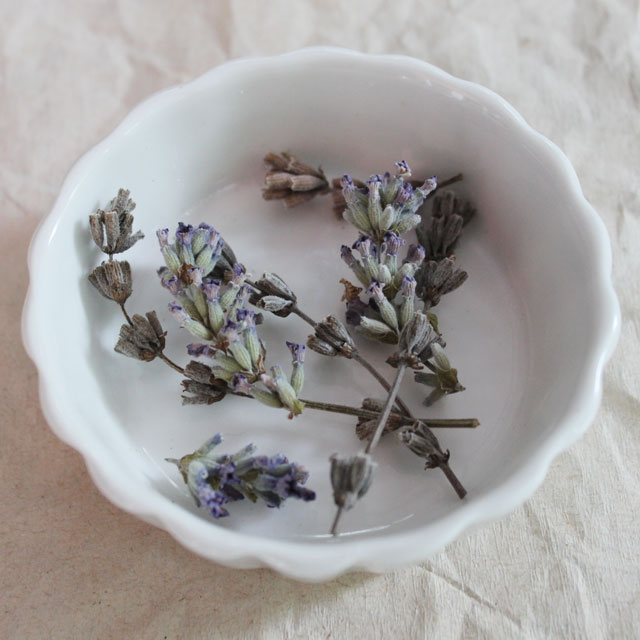 dried lavender buds homegrown