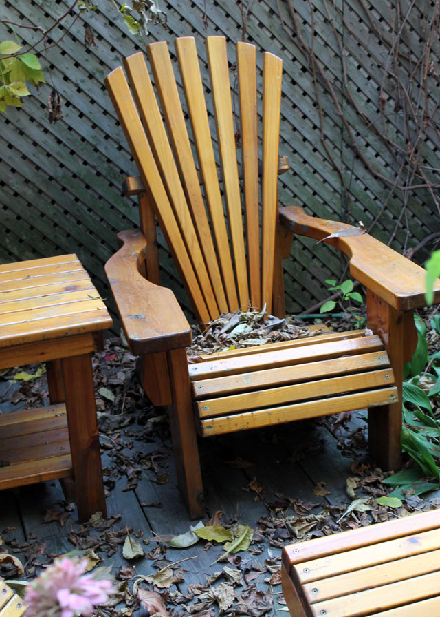 garden-chair-in-the-fall