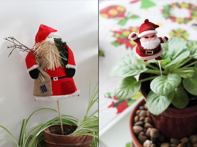 christmas-plant-decorations
