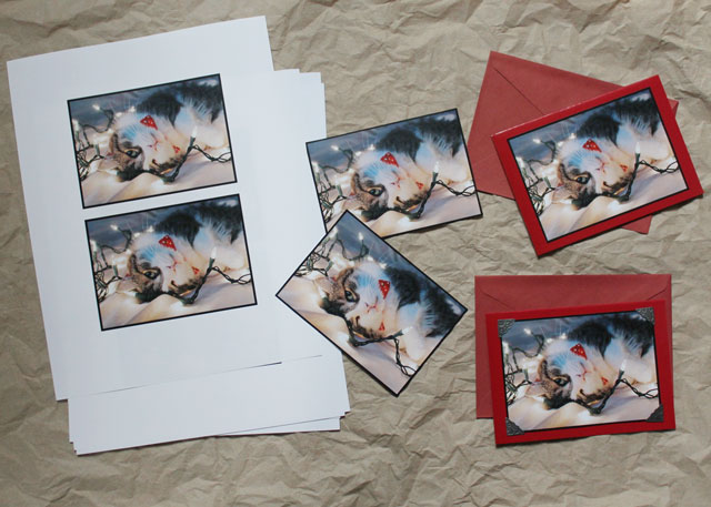 making greeting cards from your own photographs diy