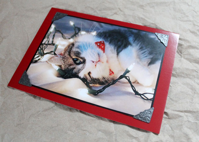 using your own photographs to make your own cards greeting christmas handmade diy