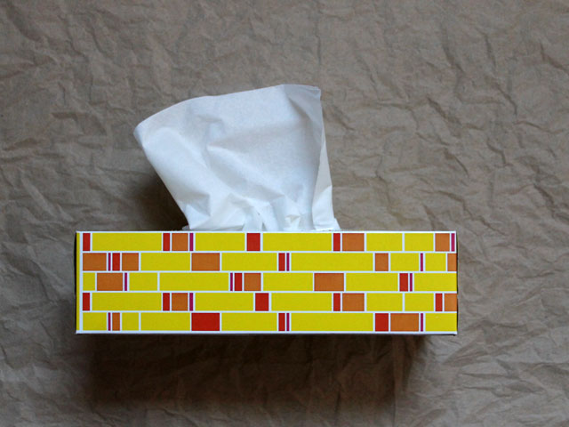 nice-tissue-box-good-to-repurpose