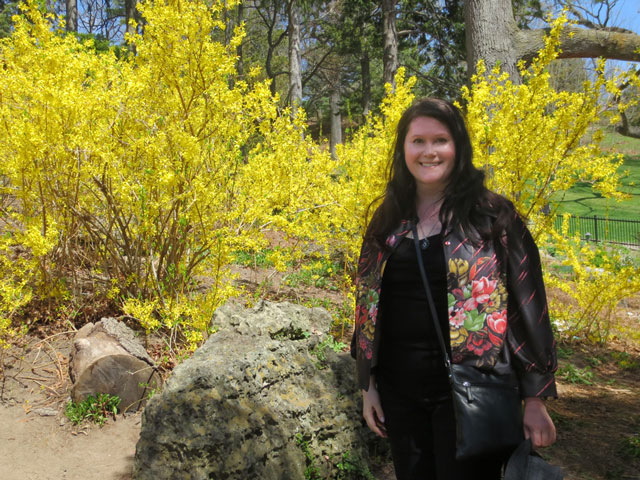 in-high-park-with-forsythia-bushes