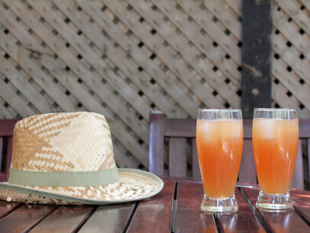 cocktails and hat
