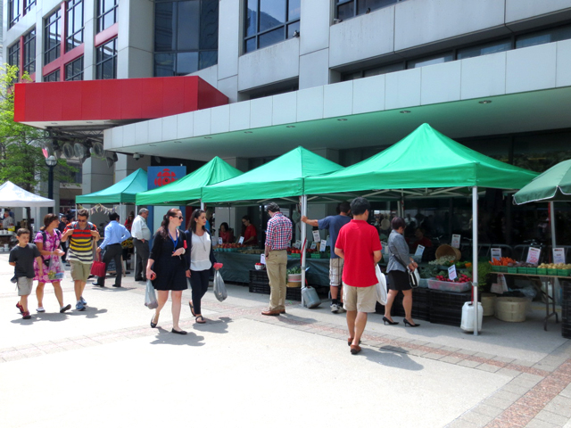 farmers market in downtown toronto simcoe park