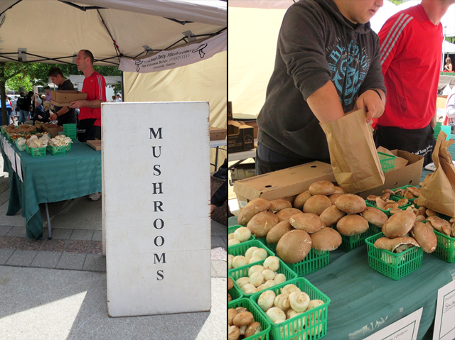 mushrooms for sale at downtown toronto farmers market