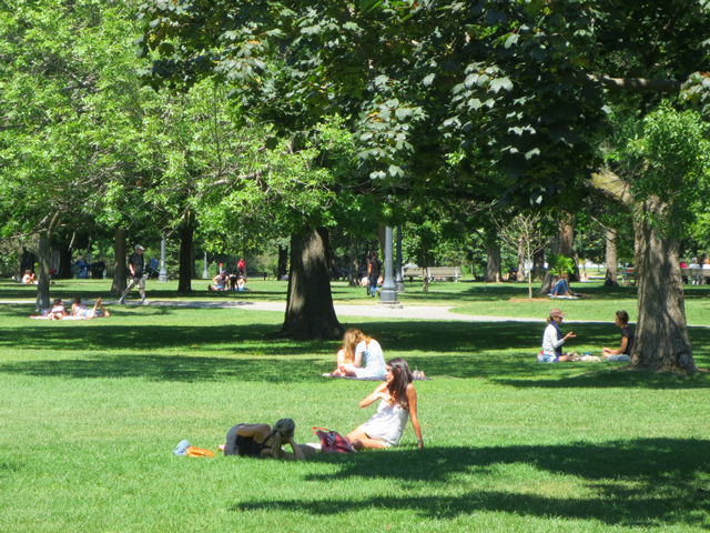 summer-day-in-trinity-bellwoods-park-toronto