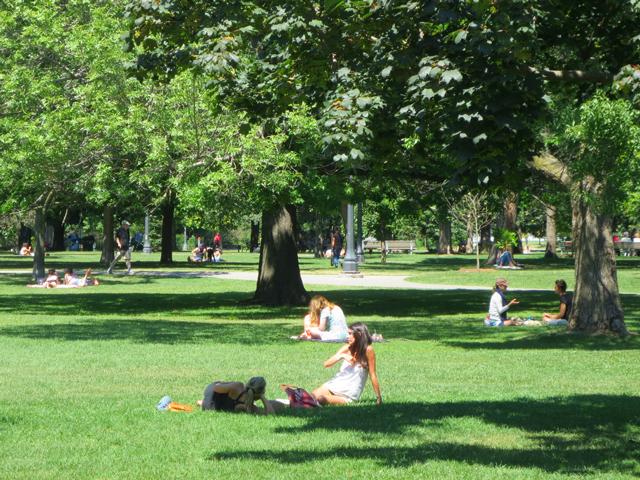 summer-day-in-trinity-bellwoods-park-toronto