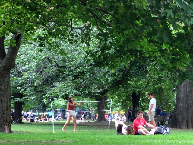 badminton-net-in-the-park