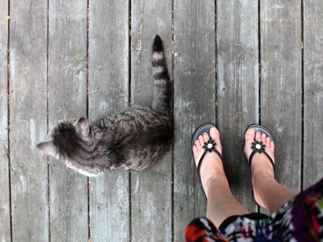 eddie-and-my-sandals