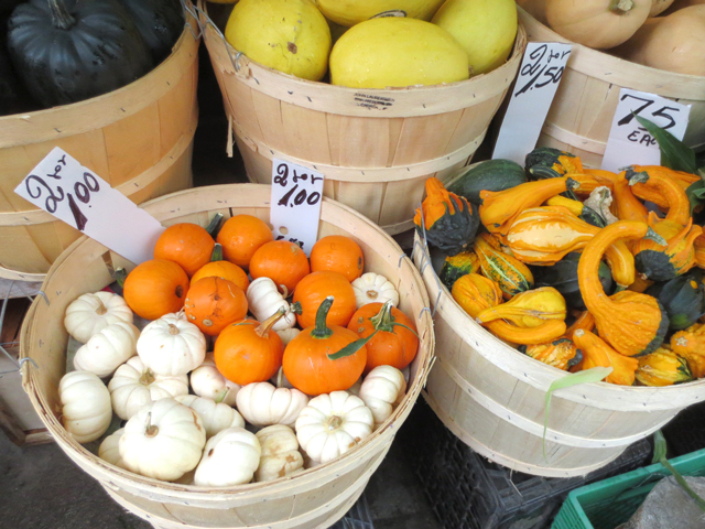 gourds-at-the-market-autumn-vegetables