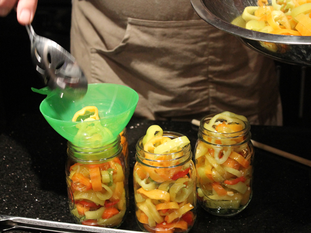 ... Preserving by the Pint (Marisa McClellan) pickled hot pepper rings