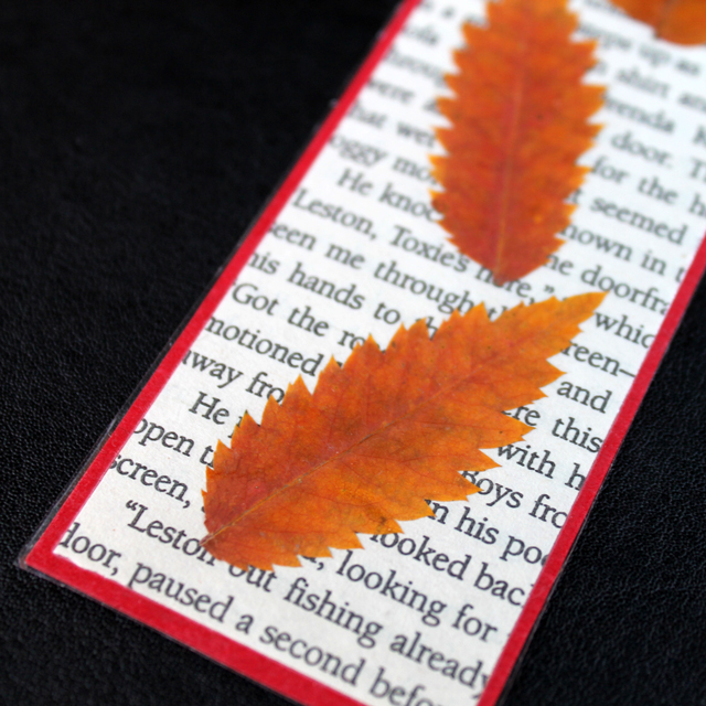 bookmark-made-from-pressed-leaves-how-to-make