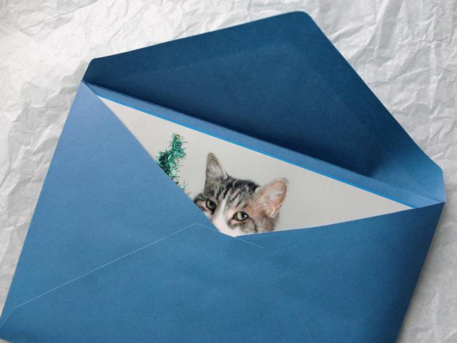 sneak-peek-handmade-christmas-card-eddie-christmas-portrait