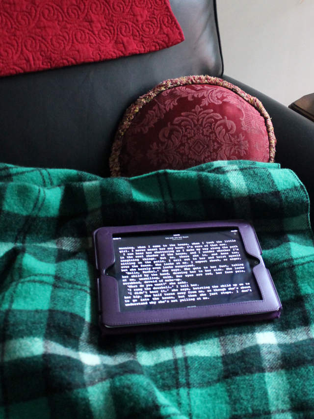 reading-a-library-book-on-an-ipad-toronto-public-library-using-overdrive-app