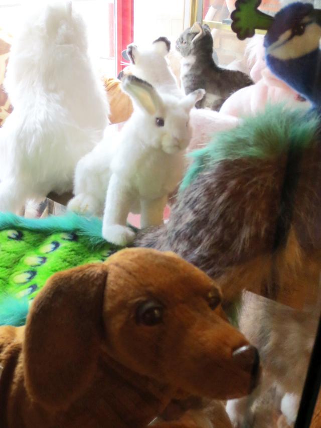 plush-toys-at-toy-terminal-toronto