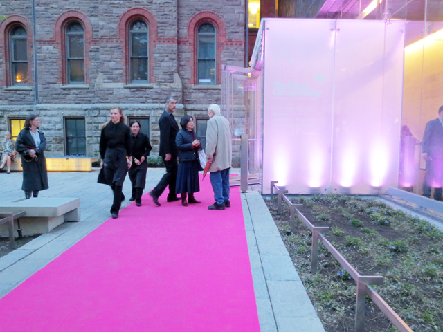 the-pink-carpet-royal-conservatory-of-music-royal-occasion