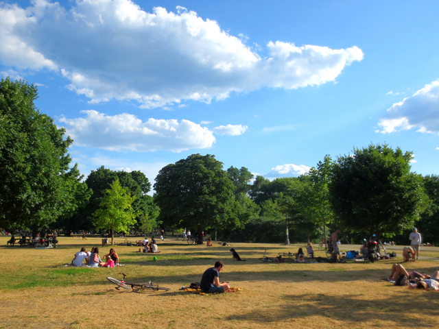summer-evening-in-trinity-bellwoods-park-toronto