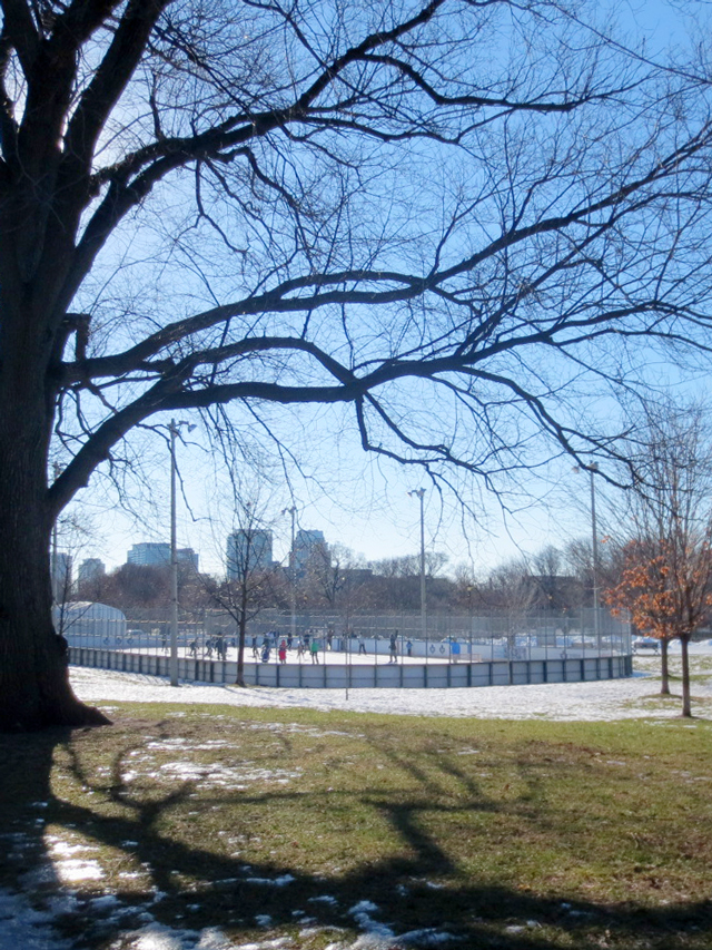 outdoor ice rink in trinity bellwoods park toronto