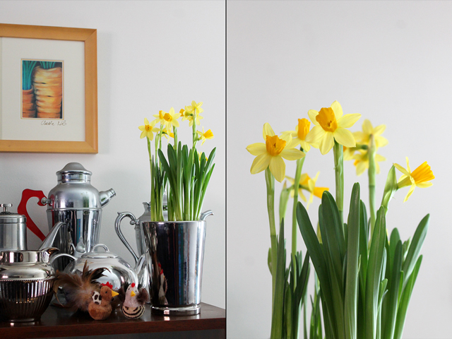 mini daffodil flowers part of easter decorating